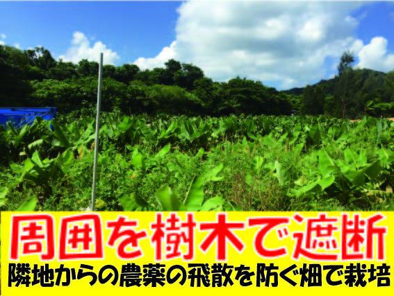安心・安全は畑の環境から生まれます。