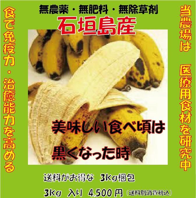 石垣島のバナナを直送します!