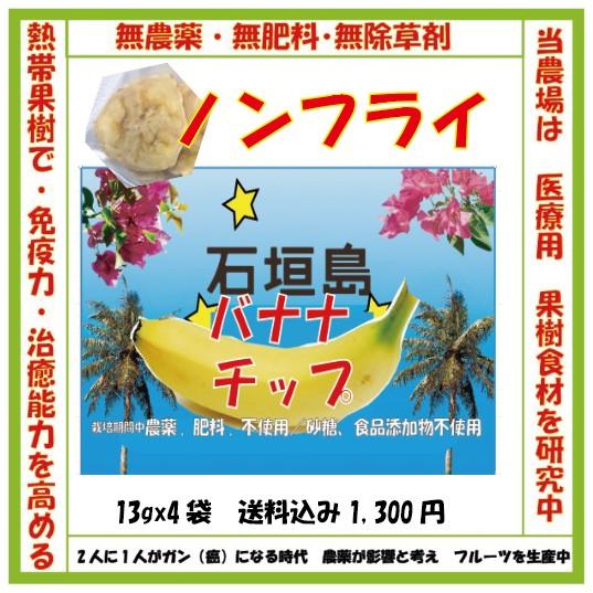 石垣島のバナナチップス・ノンフライです