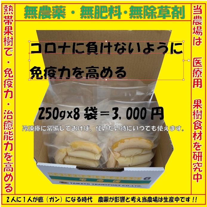 冷凍バナナ- 250g×8袋